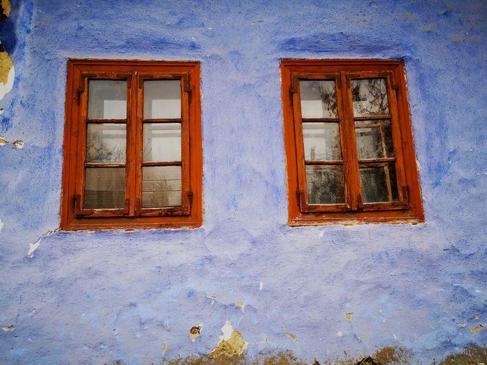 Rotting Window