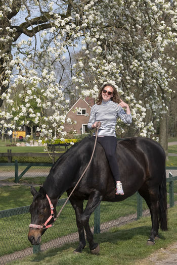 Girl on a pregnant brown horse without a saddle, with white blossom in the background, thumbs up.
