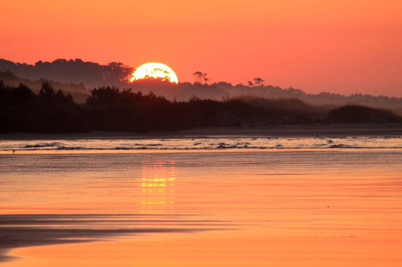 South Carolina Sunrise Sun Orange Color Scenics Tranquil Scene Beauty In Nature Majestic Romantic Sky Sunrise South Carolina Landscape Nature Beach