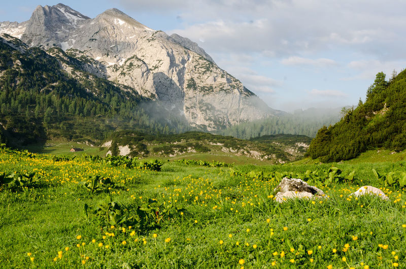 Beauty In Nature Day Hiking Landscape Mountain Nature No People Outdoors Reiteralm Scenics Sky Tranquil Scene Tranquility