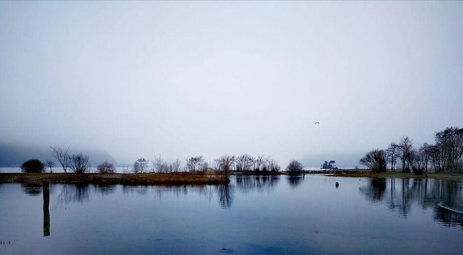 Water Tree Lake Reflection Mountain Sky Landscape