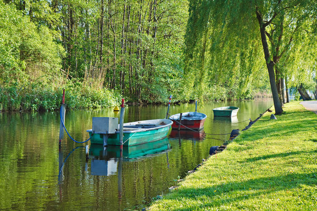 Boats and trees on a river. Beauty In Nature Beeskow Boat Day Forest Green Color Growth Mode Of Transport Moored Nature Nautical Vessel No People Non-urban Scene River Riverbank Scenics Solitude Tranquil Scene Tranquility Transportation Tree Tree Trunk Water Waterfront