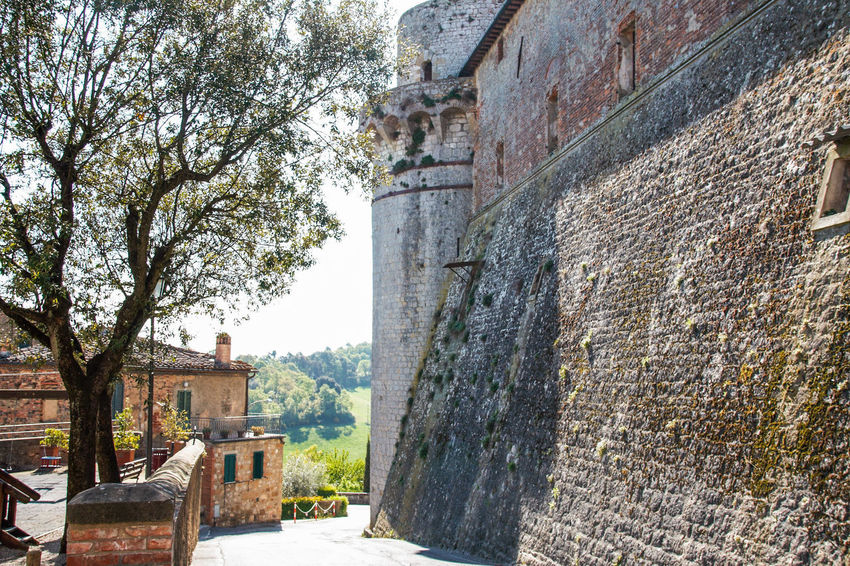 Trequanda Tuscany Architecture Building Building Exterior Built Structure Burgers Day History Nature No People Old Outdoors Siena The Past Town Val Di Chiana  Village