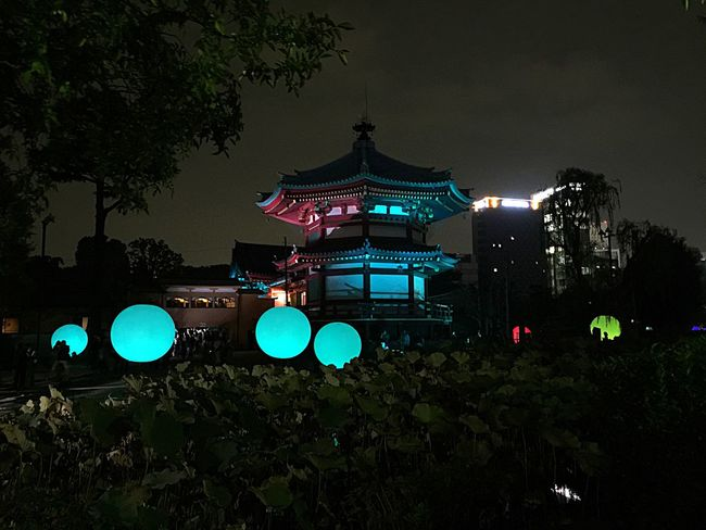 It's magic ! Colourful Check This Out Unique Tadaa Community Discover Your City Travel Architecture Japanese Culture Garden Night Nightphotography The Architect - 2017 EyeEm Awards