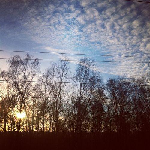 Kalt, #Sonne, perfekt #winter #sun #iphone #clouds #sky #outoftrain Winter Outoftrain Clouds IPhone Sun Sonne Sky