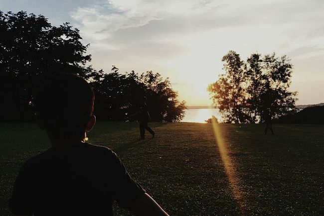 Rear View Child Childhood Children Only Boys Tree One Boy Only Sunset People One Person Silhouette Sunlight Males  Standing Sky Outdoors Nature Adult Day