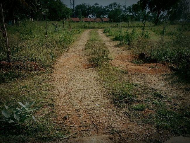 Dirt Road The Way Forward Clear Sky Field