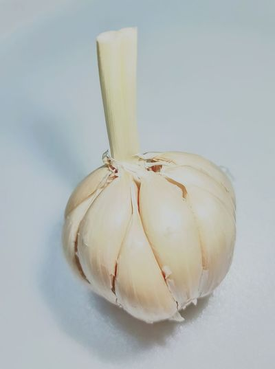 garlic food