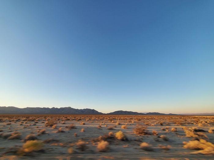 Surface level of desert against clear blue sky