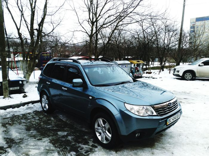 #forester #Subaru Car Land Vehicle Transportation Bare Tree Mode Of Transport Stationary Tree Winter Day