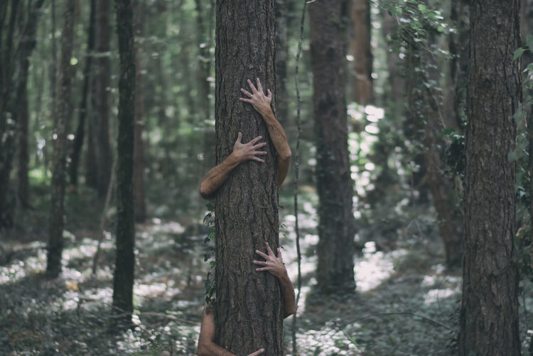 Men Embracing Tree Trunk In Forest