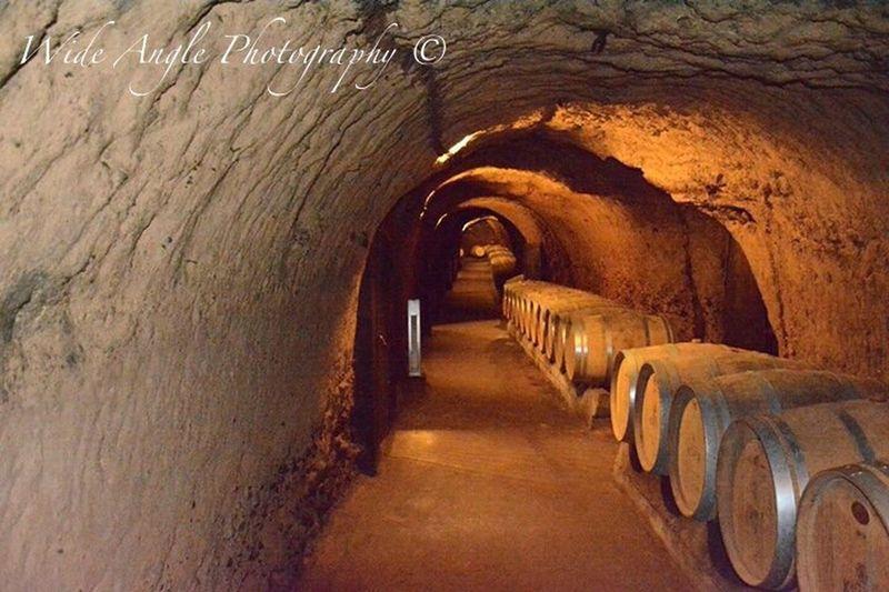 Wine Wine Tasting at Ksara Lebanon Nikonphotography