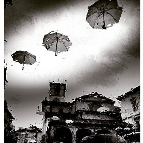 Finalmente piove esultano gli ombrelli..... Rainfromwindow Umbrrella Igrain Rain Loves_united_asti Bnwitalian  Soup Excellent_bnw Ig_worldbnw Vivobnw Ig_biancoenero _world_in_bw Dsb_noir Eranoir Bnwitalian  Excellent_bnw Ig_worldbnw Igclub_bnw Loves_noir Igs_bnw Ig_contrast_bnw Master_in_bnw Top_bnw Tv_pointofview_bnw Ig_asti_ world_bwn darkness piemonte_super_pics