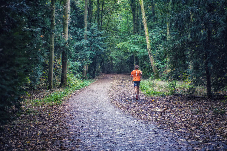 Man running on road amidst trees in forest