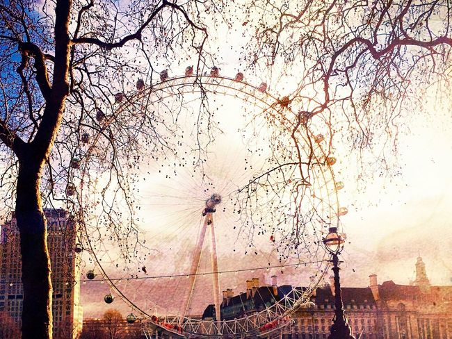 London Eye Outdoors Londonsouthbank London