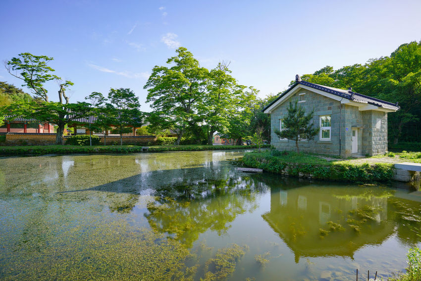 Water Reflection Architecture House Lake Building Exterior Built Structure Outdoors No People Sky Tree Watermill Nature Rice Paddy Day 순천스냅 광양스냅 여수스냅 Korea Hanguo