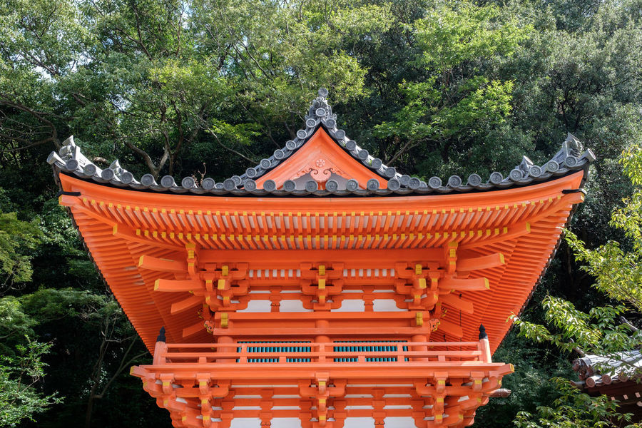 Kimiidera Architectural Feature Architecture Built Structure Culture Cultures Day Eaves Famous Place Green Color Kimiidera Outdoors Pagoda Temple - Building Torii Gate Tourism Tradition Traditional Tree