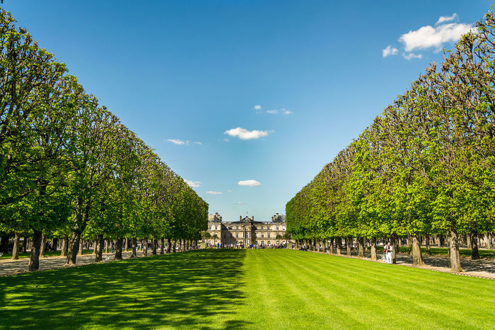 Architecture Beauty In Nature Blue Cloud Cloud - Sky Footpath France Grass Green Green Color Growth Idyllic Landscape Nature Outdoors Paris Plant Sky Sunlight Sunny The Great Outdoors - 2016 EyeEm Awards Tranquil Scene Tranquility Travel Destinations Tree Market Bestsellers October 2016