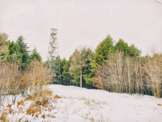 A fire tower in the Adirondacks. Fire Tower Hiking Adirondack Mountains Winter Snow Cold Temperature Nature Tree Tranquility Landscape No People Tranquil Scene Beauty In Nature Scenics Outdoors Day Sky