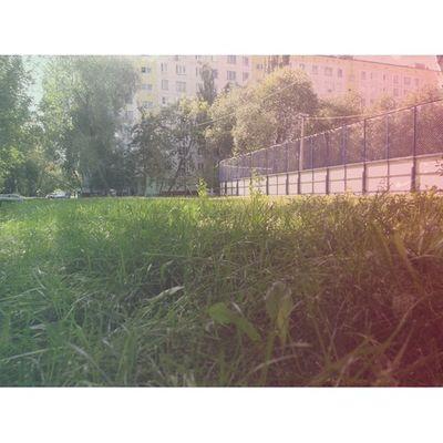 Осень медленно наступает и у нас осень отрадное Москва Россия svao свао autumn moscow russia