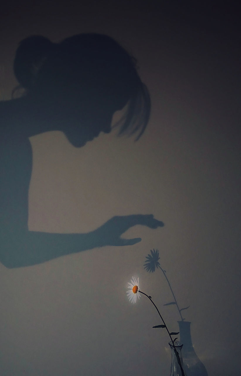 SILHOUETTE OF WOMAN STANDING ON FLOWERING PLANT AGAINST SKY