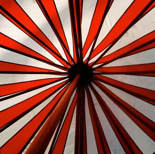 Circus. EstoyEnLaTarumba Colour Of Life Color Palette Lima Perú VSCO Circus Tent