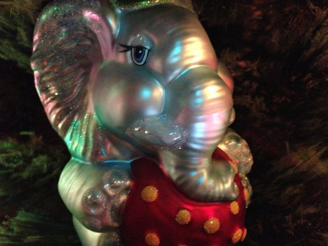 There's always an Elephant in the room at our house during the Festive Season : The Purist (no Edit, No Filter) Christmas