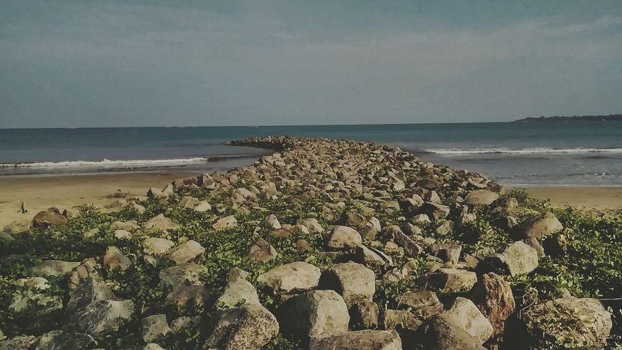 find your rule till in the end #WestJava #beach #seaside #horizon #landscape #rocks #brown Flower Seascape Wave