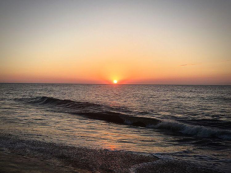 Sunrise OCMD