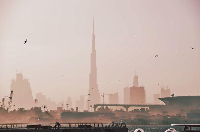 Birds flying over city against clear sky