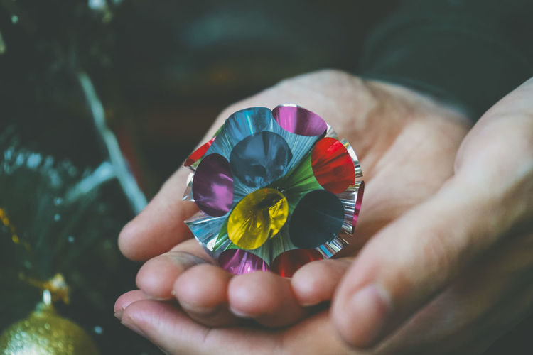 Close-up of hand holding multi colored flower