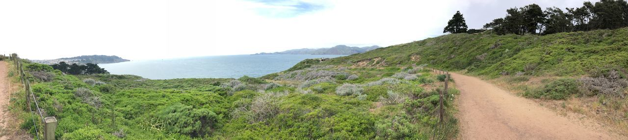 Pacific Coast Pacific California San Francisco Baker Beach Plant Grass Landscape Sky Nature Environment Panoramic Land Day Tree Road No People Scenics - Nature Outdoors Cloud - Sky Footpath
