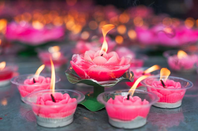 Close-up of lit pink tea lights