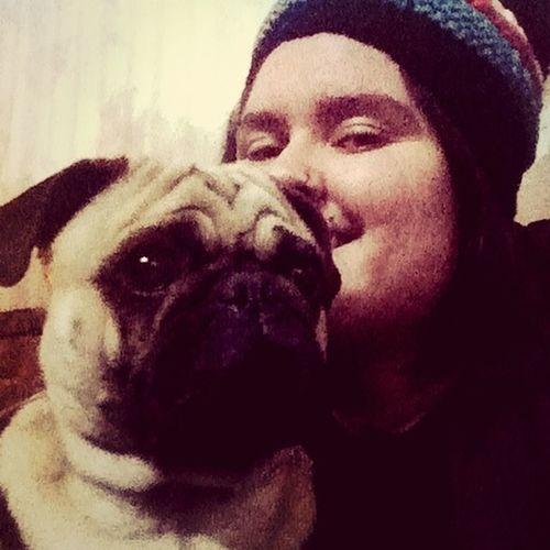 Pug Love Ilovepugs Pug Pug Chile
