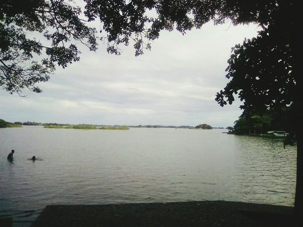 Lake Tranquil Scene Swimming