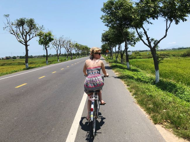 Transportation Rear View Plant Road One Person Bicycle Tree Nature Leisure Activity Ride Mode Of Transportation Riding Sunlight Women Full Length The Way Forward Day Real People Land Vehicle Lifestyles