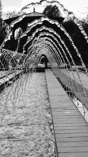 Empty footpath by footbridge