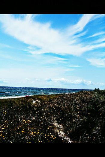 Sandhammaren österlen  Skåne Ystad Beach Ystad Sea And Sky Sea Showcase July Summer ☀ Sky And Clouds EyeEm Nature Lover Beachphotography