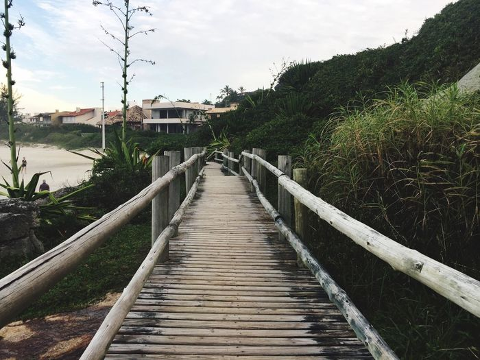 Garopaba Beach Brazil Wood First Eyeem Photo