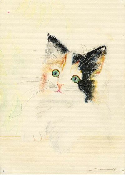 Pets Personally Draw Crayon Dessin Couleur Dessin Perso
