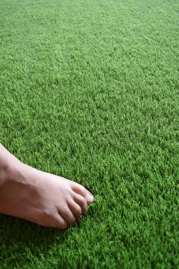 Close-up of hand touching grass on field