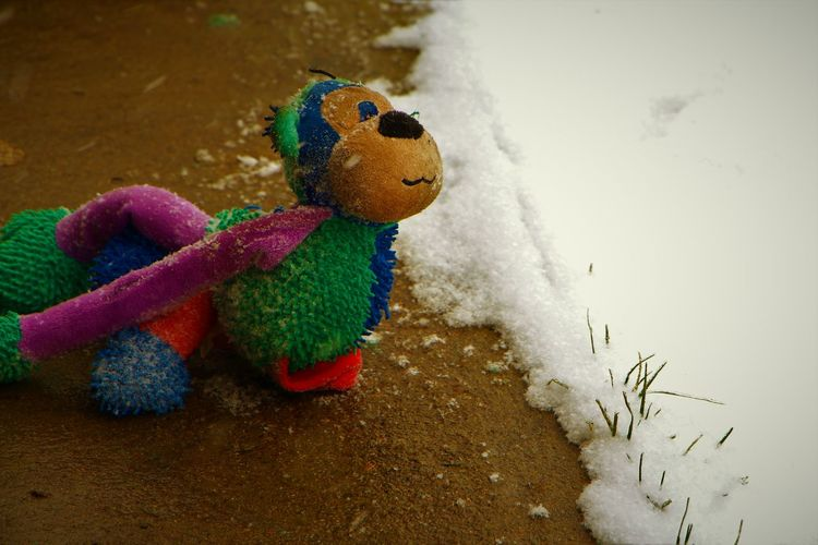 Left behind Stuffed Toy Toy No People Childhood Close-up Day Dog Toy Stuffed Animal Pet Toy Pet Outside Outdoors Snow Cold EyeEmNewHere EyeEm Gallery EyeEm EyeEm Best Shots EyeEmBestPics