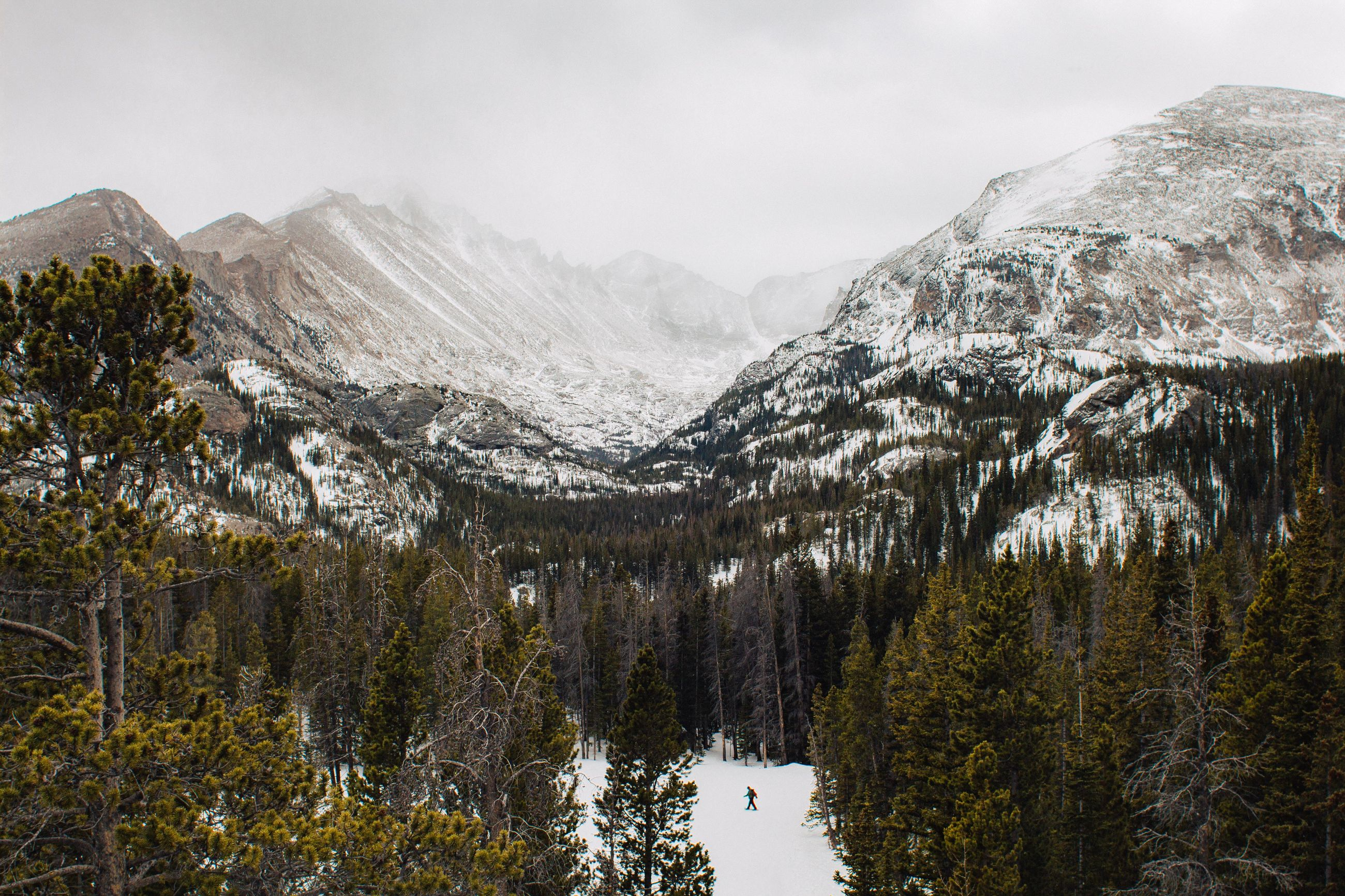 mountain, beauty in nature, sky, environment, scenics - nature, tree, snow, plant, cold temperature, mountain range, nature, water, no people, landscape, day, winter, non-urban scene, growth, outdoors, mountain peak, snowcapped mountain