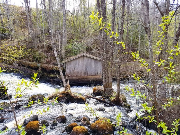 Old Buildings History Through The Lens  Oldhouse Water Beauty In Nature Springtime Beauty Is In The Eye Of The Beholder Relaxing House By The Water Close To Nature Sweden Swedish Nature