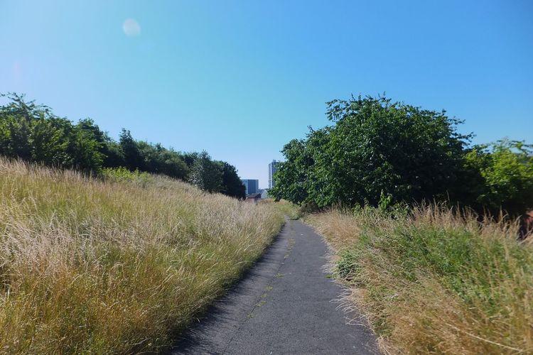 Swindon through the grass Swindon Grass Skyscraper Nature Path