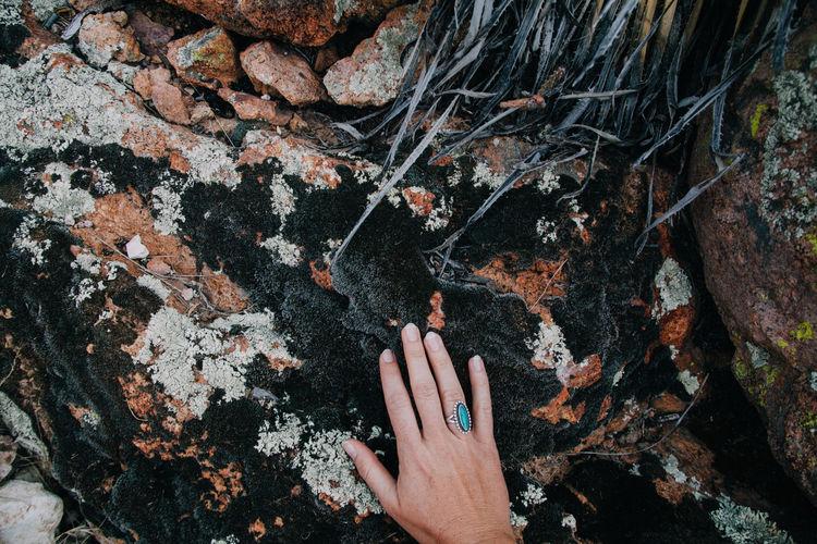 High angle view of hand on rock