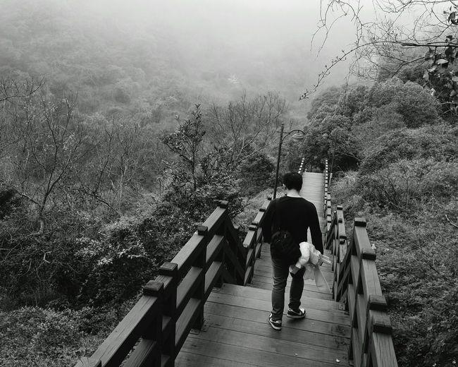 Journey Vscocam Korea Jeju Cheonjeyeon Cheonjeyeon Falls Blackandwhite Blackandwhitephotography Bw Learn & Shoot: Simplicity Showcase: November