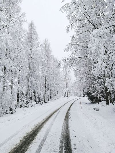 Spring? Should be... Snow Springtime Global Warming Cold Temperature The Way Forward No People Outdoors Road Frozen Snowing Landscape Nature Day Tree Beauty In Nature