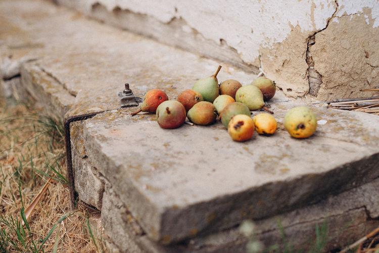 High angle view of apples on wall
