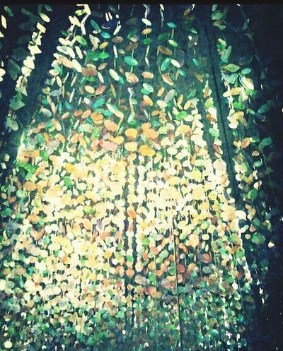 Mirar hacia arriba, perderse entre brillos de sentidos sin sentido y sonreír... Eye4photography  Santa Cruz De Tenerife Felicidad EyeEmBestPics PlaceresDeLaVida Luces Y Sombras Buenasnoches Reflexiones Colorful Streetphoto_color Colors